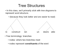 morphology     september    mr  burns quick write first off    tree structures in this class  we    ll primarily stick   tree diagrams to represent