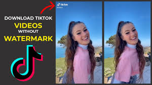 The tiktok video downloader application helps make it easier for you to download videos in mp4 format (watermak and non watermark ) as pastedownload.com is a free online video downloader service to download videos, photos and audio mp3 (all in one) from several popular websites such as. Tiktok Video Downloader Download Tiktok Video Without Watermark