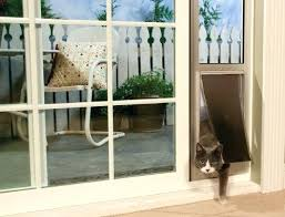 cat door installation let your pet join you out on the patio or outside deck with cat door installation