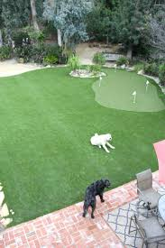 green ideas for the office. Various Putting Green Contemporary Office Ideas For The