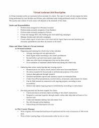 Personal Assistant Job Description Enchanting Personal Driver Job Description For Resume Lovely Luxury Truck