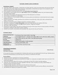 100 Example Of Resume Summary For Freshers Useful Resume Of