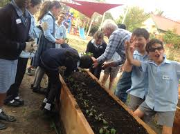 Stephanie Alexander Kitchen Garden Program St Peters Epping Sustainability Blog
