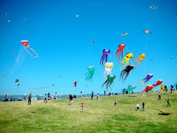 the kite runner kites loveshrek kites are arguably the most prominent symbol in the kite runner they are used to reflect the various emotional stages in a characters life the meaning of