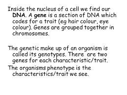 called the dominant allele inside the nucleus of a cell we find our dna b 5 an organism s genotype is its genetic makeup