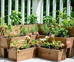 outdoor herb garden. Tiered Outdoor Herb Garden- One Time Use Only Blogger Image Garden