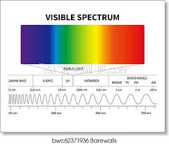 Visual Spectrum Chart Visible Light Diagram Color Electromagnetic Spectrum Light Wave Frequency Educational School Physics Vector Background Art Print Poster
