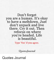 Life Is Beautiful Quotes Awesome Don't Forget You Are A Human It's Okay To Have A Meltdown Just Don't