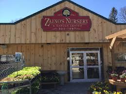 zainos nursery garden center jericho turnpike westbury newyork