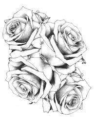 Small Picture 69 best Rose reference images on Pinterest Drawings Tatoos and