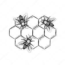пчела эскиз пчела винтаж векторный набор векторное изображение