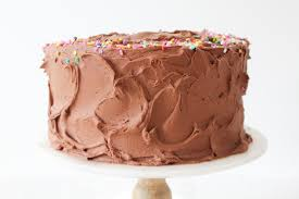 The Best Double Chocolate Birthday Cake With Sprinkles