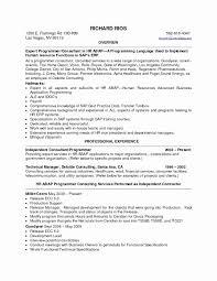 Unique Resume Career Summary Examples Culturatti