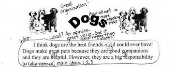 dogs expository annotated sample empowering writers ldquodogsrdquo expository annotated sample