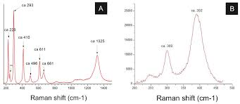 A century of trends in adult human height   eLife PeerJ