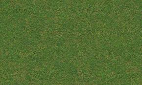 Unique Grass Texture Seamless Textures Free A And Innovation Design
