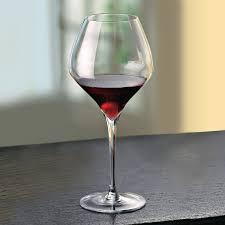 riedel vitis pinot noir glass