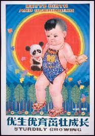 one child policy in facts and details success of the one child policy in