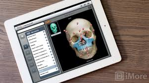 anatomy essays human anatomy essays directional terms in anatomy  anatomy homework help