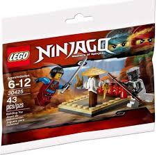 Amazon.com: LEGO Ninjago CRU Masters' Training Grounds (30425) Bagged: Toys  & Games