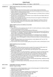 Financial Planning And Analysis Resume Examples Director Financial Planning Resume Samples Velvet Jobs 11
