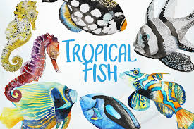 tropical fish watercolor clip art example image 1