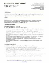 Product Manager Resume Samples Software Template For