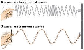 transverse and longitudinal waves venn diagram waves by calista roark