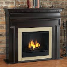 inserts cost beautiful indoor ventless insert problems with of installing logs to operate and spectacular gas fireplace repair cost also charlotte nc