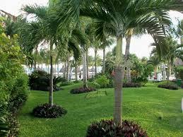 garden landscaping ideas. Wonderful Landscape-plan-front-yard-landscape-garden-landscape-fresh As Well Amusing Garden Landscaping Ideas India S