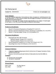 Over 10000 CV and Resume Samples with Free Download: One Page Simple Resume  Format