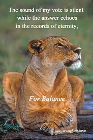 lioness and cubs quotes. Interesting And Lioness Pamela Quote To Lioness And Cubs Quotes
