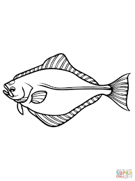 Small Picture Halibut coloring page Free Printable Coloring Pages