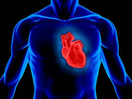 Image result wey dey for PICTURE OF THE HEART
