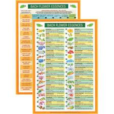 Bach Flower Remedies Chart Bach Flower Essences Mini Chart