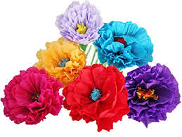 Paper Flower Tissue Paper Mexican Paper Flower Set Of 6 Tissue Paper Hand Made Party Fiesta Decor Poppy