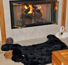 bear skin rug fireplace home design ideas