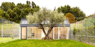 Small Picture This tiny house in Spain has room for one person and a tree Tiny