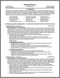 Ats Resume Enchanting Ats Formatted Resume Template It Manager Resume Sample The Resume