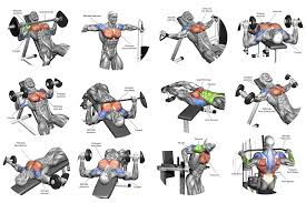 Chest Workout Chart Step By Step Basic Chest Workout Amtworkout Co