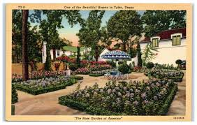 mid 1900s one of the beautiful tyler tx homes rose garden of america postcard