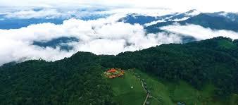 Wild Planet: Resorts in Wayanad|<b>Luxury</b> resorts in Ooty|Bandipur ...