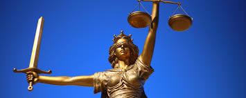 1 000 words the rule of law professor mark elliott public 1 000 words the rule of law