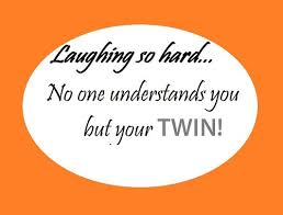 Twin Quotes Beauteous 48 Funny Twin Quotes And Sayings With Images Good Morning Quote