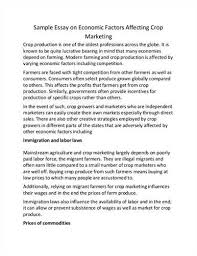ewan paterson resume ddb thesis about learning english language essay