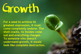 49 Quotes Business Growth Quotes Quotesgram