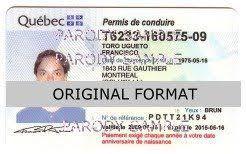 Driver Driver Quebec Driver License License Quebec Driver License Quebec