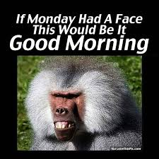 Good Morning Monday Photos In Funny If Monday Had A Face This Would Be It Good Morning Pictures 7