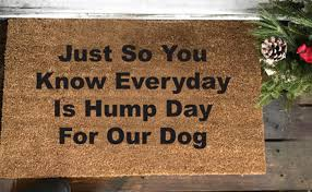 Every Day Is Hump Day Doormat - funniest doormats