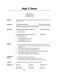 Resume Objective Examples For Customer Service Jobs Valid Job Resume